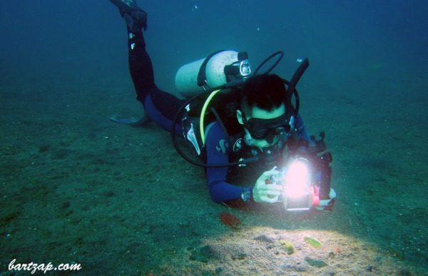 Dive-in-Lembeh