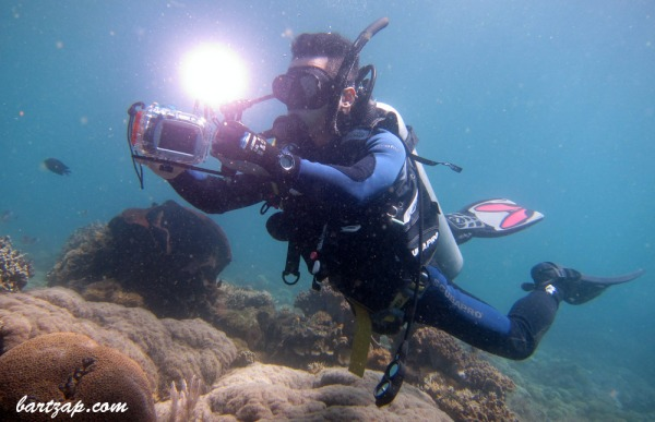 Diving-in-Pasir-Parigi