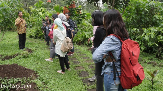 coffee-plantation-tour-mesastila-resort-magelang