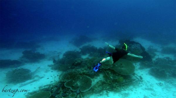 freediving-di-tanjung-karang-donggala