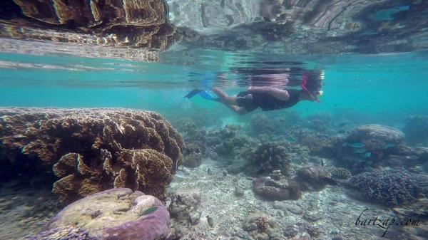 snorkeling-di-tanjung-karang-donggala