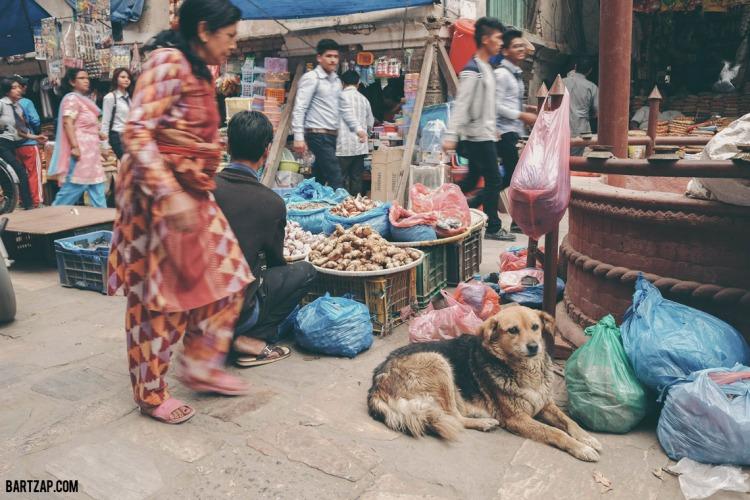thamel-katmandhu-fujifilm-x70-bartzap-dotcom