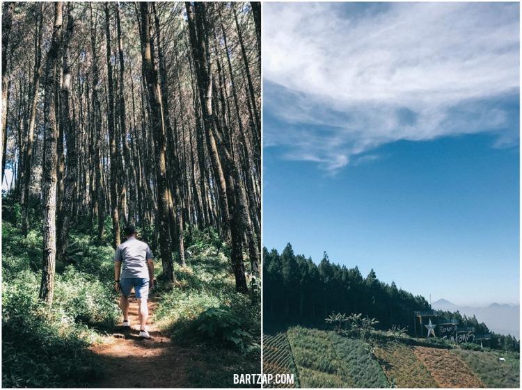 trekking-di-bukit-moko-tiga-cara-menikmati-bandung-dalam-24-jam-bartzap-dotcom