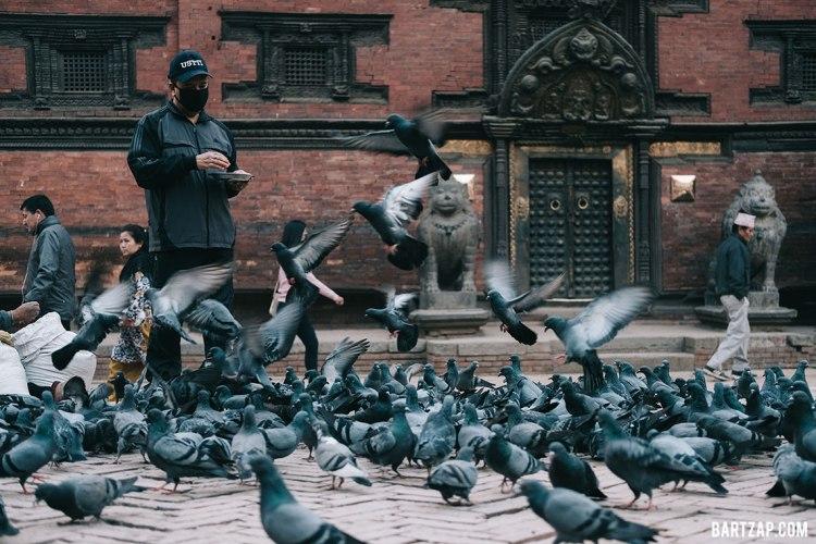 memberi-makan-merpati-di-patan-lalitpur-nepal-cultural-trip-2018-catatan-perjalanan-bersama-kawan-bartzap-dotcom